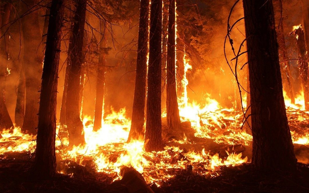 Oregon Wildfires 2020 | Your Crawl Space Guys
